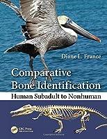Comparative Bone Identification: Human Subadult to Nonhuman