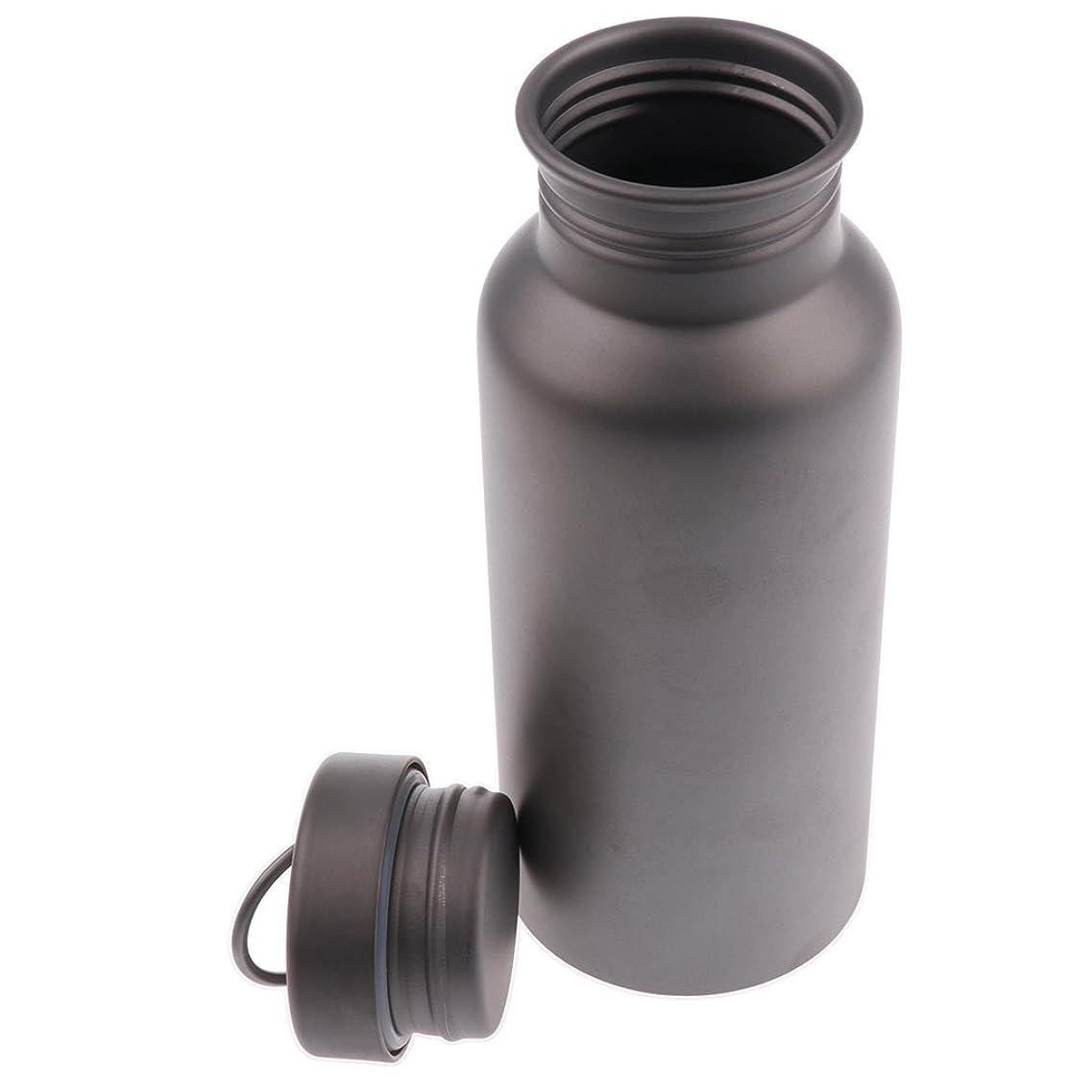適応的同意年DYNWAVE チタン スポーツ 断熱 水ボトル 漏れ防止 ティーポット 釣り キャンプ 全3サイズ