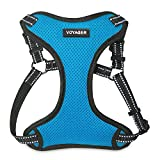 Best Pet Supplies Voyager Step-in Flex Dog Harness - All Weather Mesh, Step in Adjustable Harness for Small and Medium Dogs Turquoise, Large