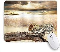EILANNAマウスパッド ヒョウ休憩劇的な曇り空サファリ野生猫自然画像 ゲーミング オフィス最適 高級感 おしゃれ 防水 耐久性が良い 滑り止めゴム底 ゲーミングなど適用 用ノートブックコンピュータマウスマット