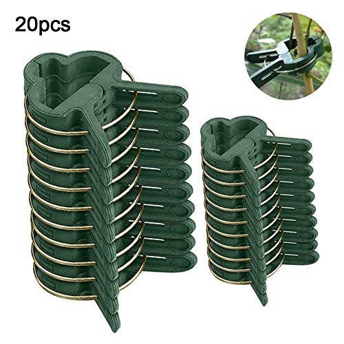 FOReverweihuajz 20Pcs Reusable Garden Plant Fixed Spring Clip Vegetables Flowers Support Clamp for Supporting Stems,Vines Grow Upright Climbing(10 Large + 10 Small ) Green