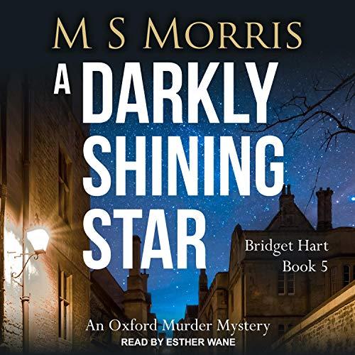 A Darkly Shining Star cover art