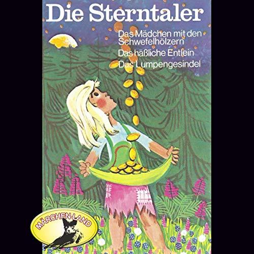 『Die Sterntaler und weitere Märchen』のカバーアート