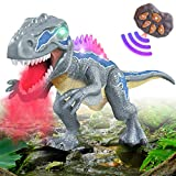 DAOKEY Remote Control Walking Dinosaur T-Rex with Water Mist Spray, Electronic Dinosaur Toy Walking with LED Light Up Roaring Realistic Simulation Sounds