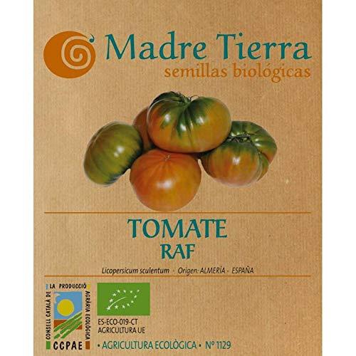 Madre Tierra - Semillas de Tomate Raf - ( Licopersicum Sculentum) Origen Almeria - España- Ideal para Tu Huerta - Aprox 1 gr