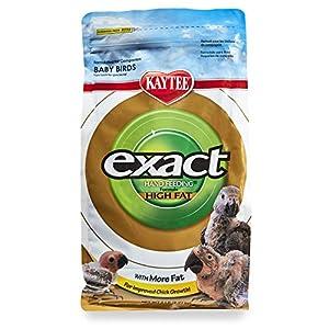 Kaytee Exact Handfeeding High Fat 5LB
