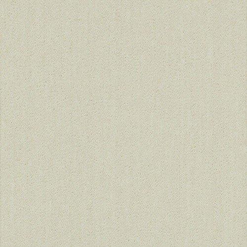 サンゲツ タイルカーペット 50×50cm 20枚入り NT-367