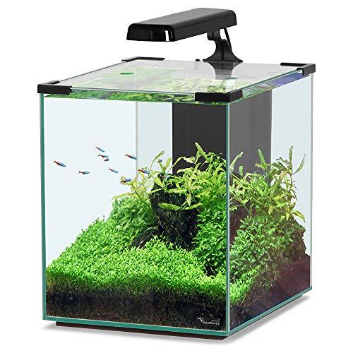 Aquatlantis Nano Cubic 30 schwarz