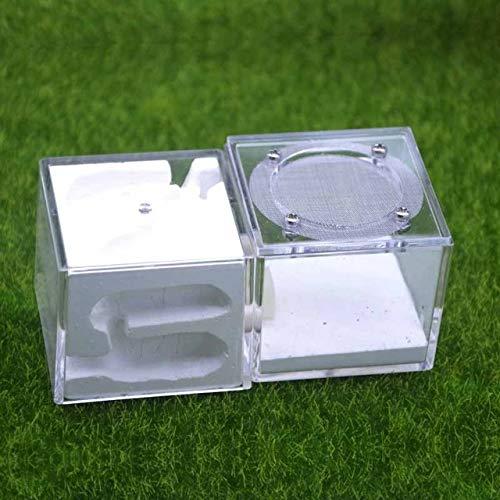 Cajas de Insectos Nuevo diseño de acrílico de Yeso Nido estéreo Hormigas Granja Cría nidos de Insectos Mascotas Taller Reptil terrario (Color : White)