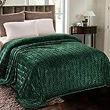 Whale Flotilla Flannel Fleece Queen Size(90x90 Inch) Lightweight Bed Blanket, Soft Velvet Bedspread Plush Fluffy Coverlet Palm Leaves Design Decorative Blanket for All Seasons, Dark Green