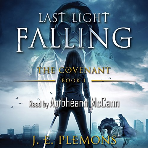 Last Light Falling  By  cover art