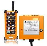 NEWTRY Drahtlose Kranfernbedienung Hohe Qualität Industrielles elektrisches Hebezeug (+ DC12V Empfänger)