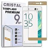 REY Protector de Pantalla Curvo para Sony Xperia XA Ultra, Oro, Cristal Vidrio Templado Premium, 3D / 4D / 5D