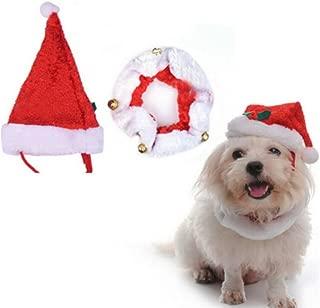 pet christmas hat