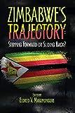 Zimbabwe's Trajectory: Stepping Forward or Sliding Back
