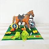 Geldgeschenk Geburtstag, Pferd, reiten, Hobby,...