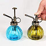 YUNVJIG Botella Aerosol Garden Tool Frasco pulverizador de presión a Prueba de Fugas Multifuncional Cleaning, jardinería Pulverizadorbotella Set de regaderas de Vidrio de 2