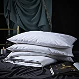 Three Geese Adjustable Layer Goose Feather Pillow,Pancake Bed Pillow,100% Soft Egyptian Cotton Cover,Good for Side and Back Stomach Sleeper, Queen Size,Packaging Include 1 Pillow.