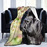 Manta de Franela cálida, súper Suave y cómoda, Manta de Microfibra Negra para Perros de Terranova, Adecuada para Todas Las Estaciones, sofá Cama, Sala de Estar, Dormitorio, Manta, 70 x 100 cm