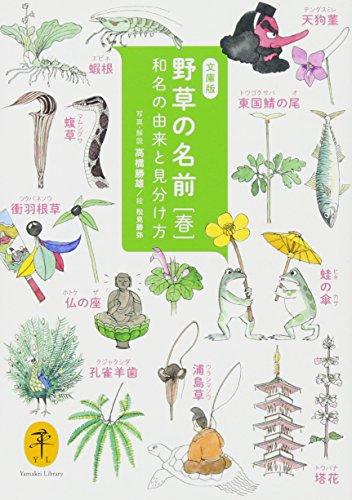 野草の名前 春 和名の由来と見分け方 (ヤマケイ文庫)の詳細を見る