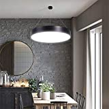 LED moderne minimalistische Deckenleuchten, Pendelleuchten, Büroleuchten, kreative runde Leuchten, Ideal für Badezimmer Schlafzimmer Küche Wohnzimmer Flur Balkon (monochrom),Schwarz,hollow 800mm
