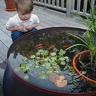 Garden Water Feature - Pop Up Pond Aquarium Pond Kit – Fawn – 45 Gallon