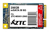 ZTC 256GB Bulwark V2 mSATA 6G 50mm Enhanced SSD Solid State Drive Model ZTC-MS001-256GB