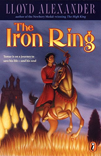 Iron Ring Books make great 6th Anniversary Gifts for Him