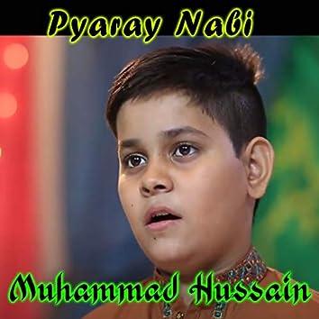 Pyaray Nabi - Single