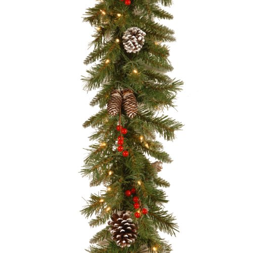 National Tree Company Company Pre-lit Artificial Christmas Garland | Flocked with Mixed Decorations and White Lights | Frosted Berry, 9 ft