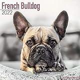 French Bulldog Calendar 2022 - Dog Breed Calendar - Wall Calendar 2021-2022