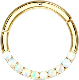 Jewseen 14K Gold Opal Lined Set Hinged Segment Hoop Rings 16g Septum Clicker Nose Rings Daith Trgaus Helix Earring Body Pi...