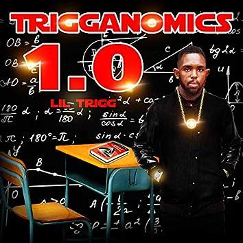 Trigganomics 1.0