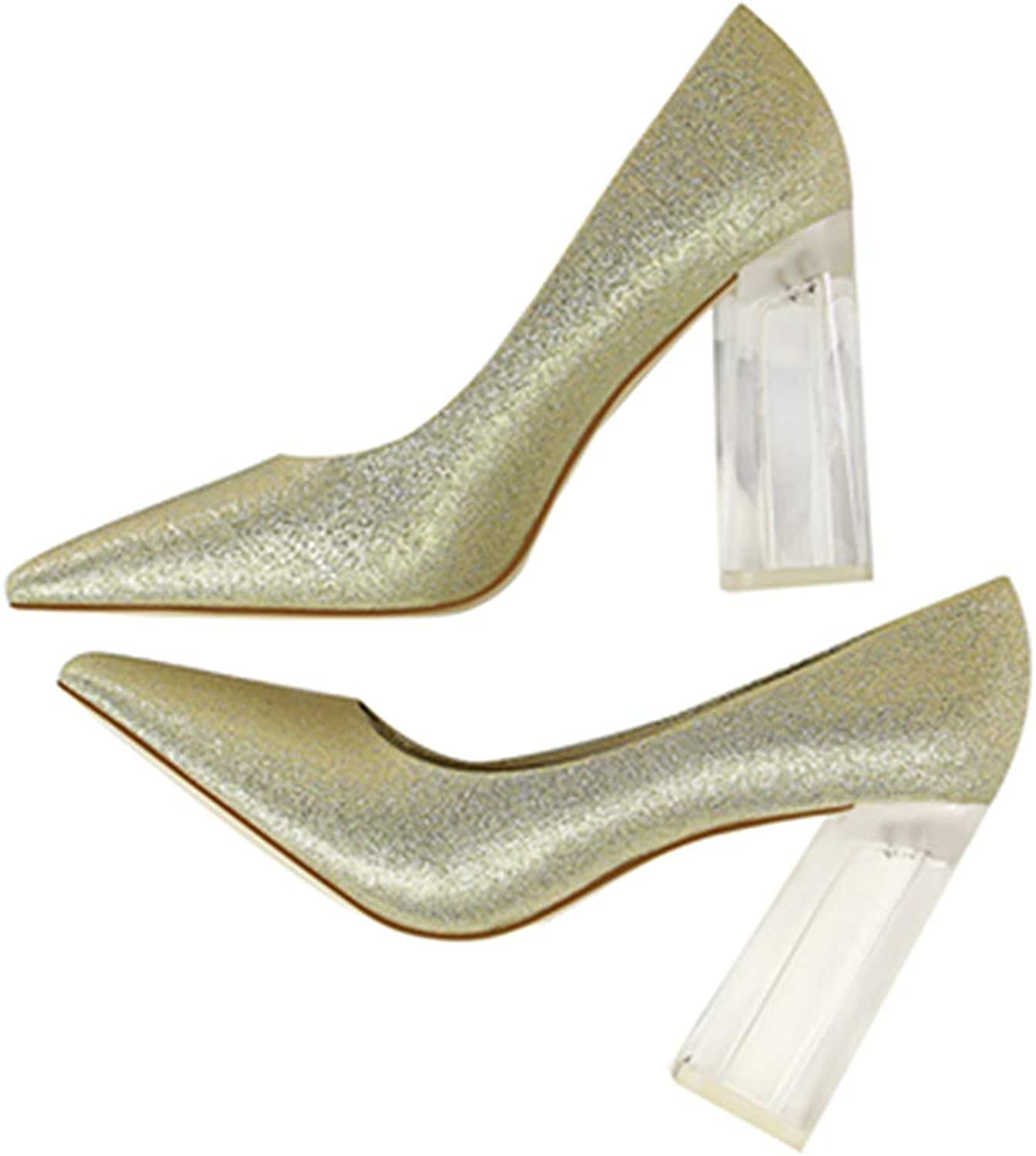 Kyle Walsh Pa Women Fashion Pumps Transparent Block Heel Pointed Toe Ladies Sexy High-Heel shoes