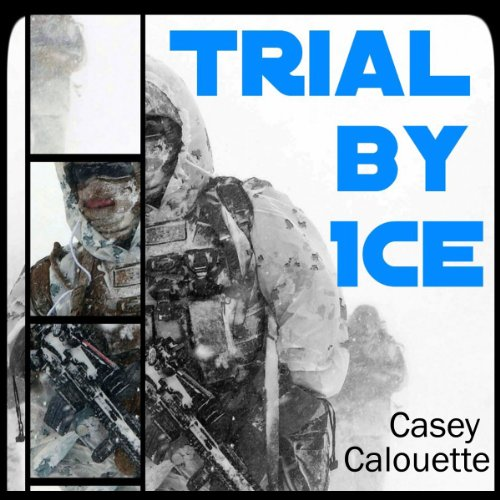 Trial by Ice audiobook cover art