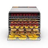 Klarstein Fruit Jerky Pro 10 - Déshydrateur alimentaire, Puissance 1000W, 10 larges...