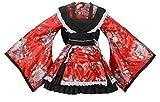 Sheface Women's Cosplay Lolita Fancy Dress Japanese Kimono Anime Costumes (XX-Large, P02 Red)