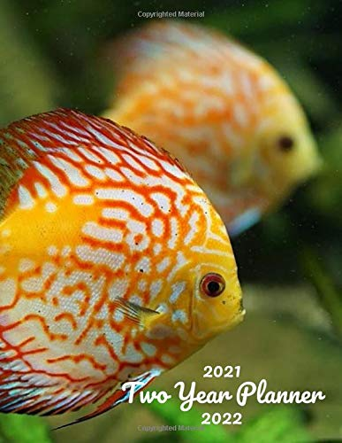 2021-2022 Two Year Planner: Discus Fish 24 Month Calendar Weekly Monthly Schedule Organizer Yearly Planner 2021-2022 2 Year Planner Notebook Aquarium ... Catfish Dolphin Tilapia Sardine Shark Gifts