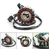 Artudatech Alternador de motocicleta, bobina de estator Magneto, generador magnético de moto, generador de motor, generador de encendido para SYM GTS 125 LM12W Joymax 125 LN12W GTS 200 LM18W