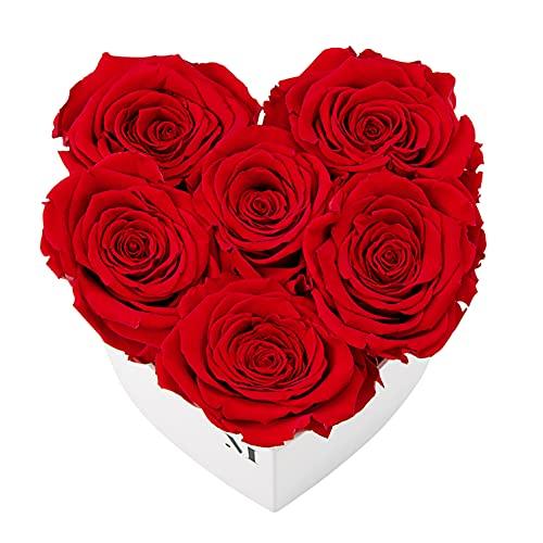 Mia Milano Infinity Rosen Herz I Rosenbox mit 6 haltbaren konservierten Rosen I Herz Deko mit echten roten Infinity Rosen I Blumen in Box in herzförmiger Geschenkbox