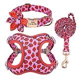 QIANNI Dog Collar Dog Collar Leash Set Personalized Pet Dog Collar Harnesses Walking Leash for Medium Large Dogs French Bulldog