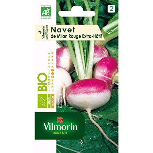 Vilmorin - Sachet graines Navet de milan rouge extra Hatif à chassis BIO