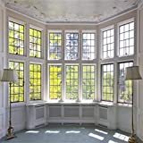 AOFOTO 10x10ft Classic French Pane Bay Windows Backdrop Luxury Retro Interior Decoration Floor Lamps Photography Background New Life Furniture Home Lifestyle Estate Modern Residence Photo Studio Props