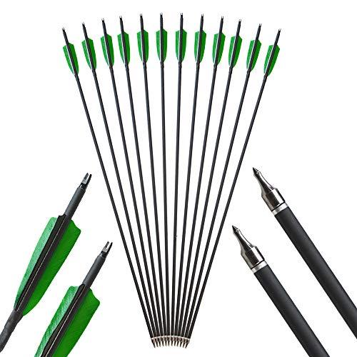 AMEYXGS 6 /12pcs Bogenschießen Carbon Pfeile 500 Spine Kohlenstoff Pfeil Praxis Jagd Pfeil für Compoundbogen und Recurve Bogen (6pcs)