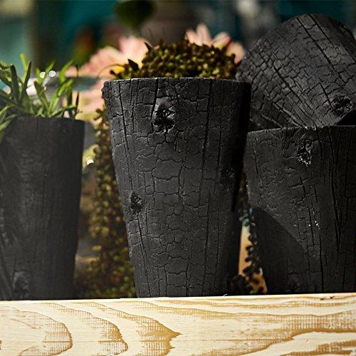 EDG Enzo De Gasperi bloempot, cementpot, plantenbak, vintage landhuis shabby - boomstam - diameter 17 cm/hoogte 29 cm - zwart - cement
