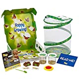 Insect Lore Butterfly Garden: Original Habitat and Two Live Cups of Caterpillars – Life Science & STEM...