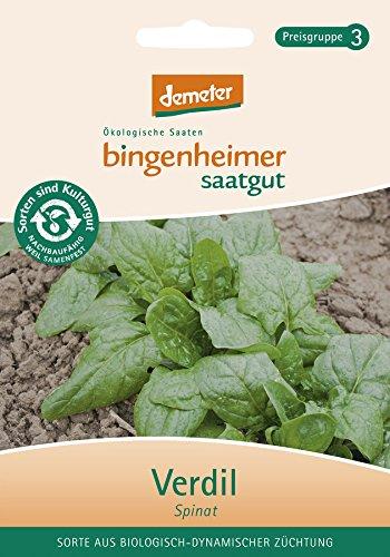 Bingenheimer Saatgut - Spinat Verdil - Gemüse Saatgut / Samen