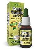Green Propolis Extract 15% Brazilian, 1 fl.oz with Dropper