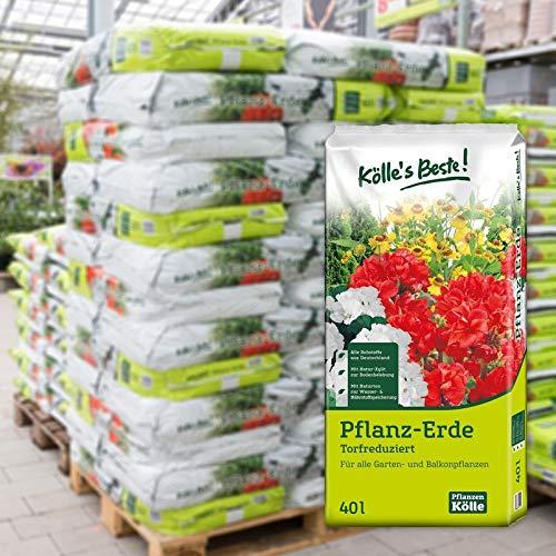 Kölle's Beste! Pflanzerde torfreduziert, 2400 Liter gesamt, 60 Sack à 40 Liter auf Palette