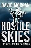 Hostile Skies by David Morgan (2007-02-01)